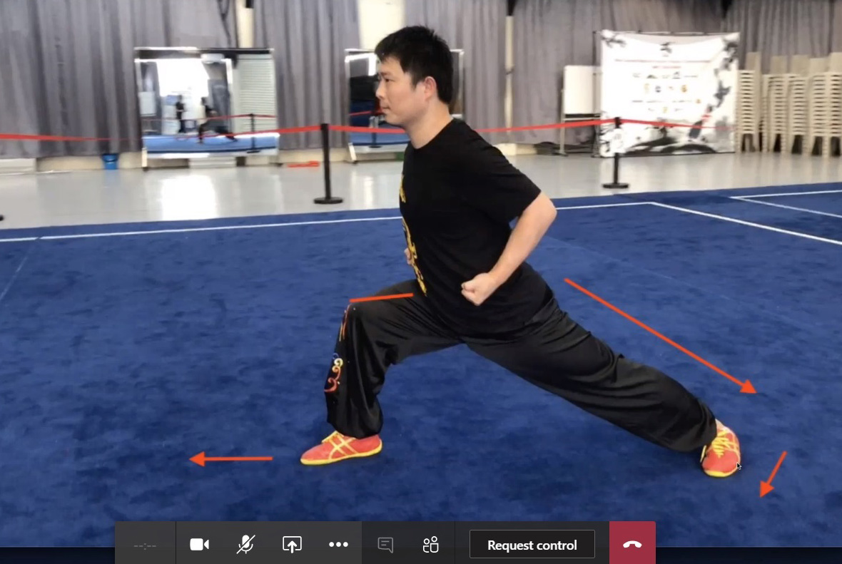 A man demonstrating Wushu kung fu moves